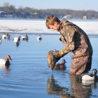Winter Storm Triggers Waterfowl Exodus